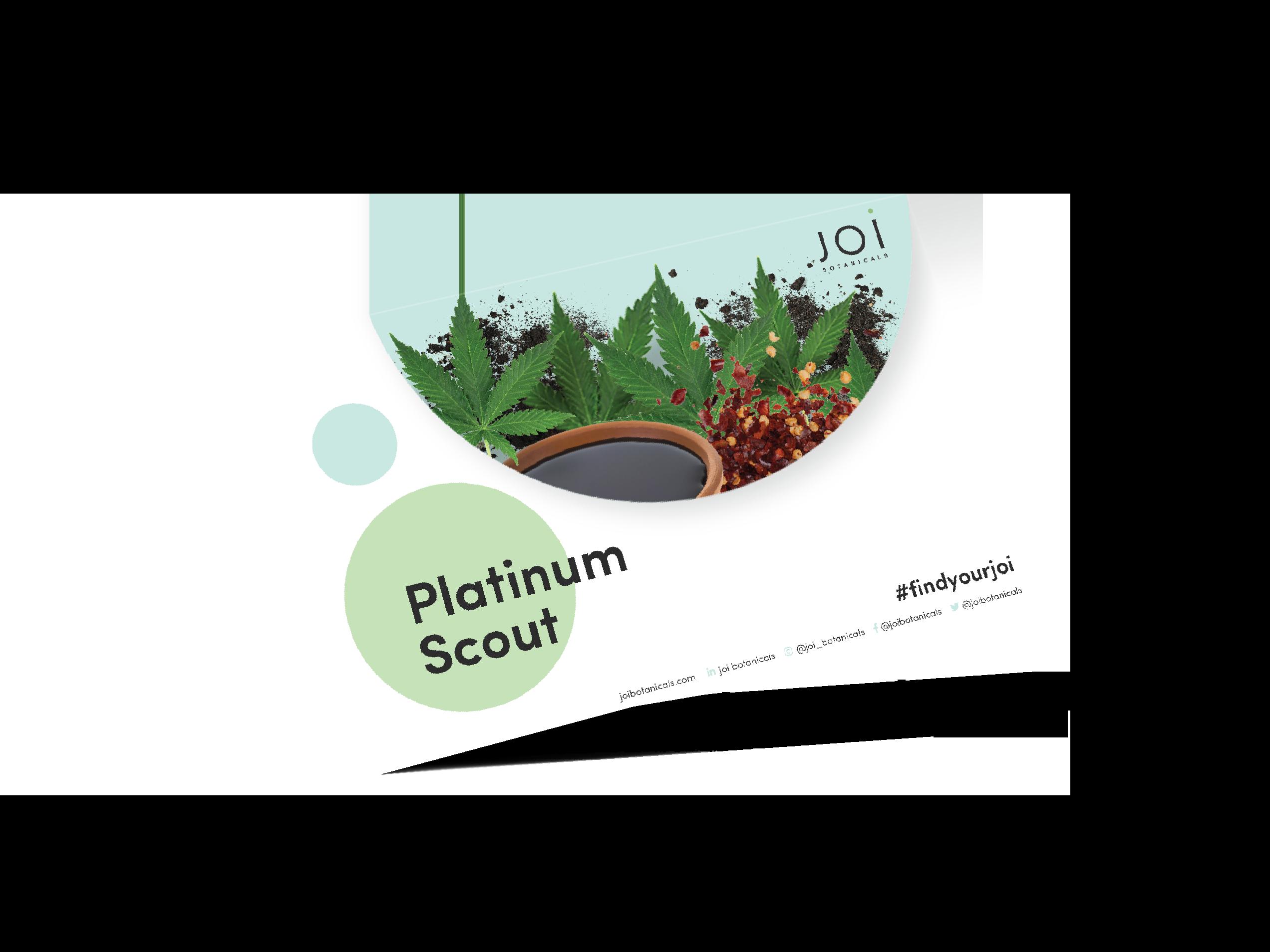 Platinum Scout